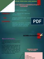 Exposiciones Dictamen.ppt