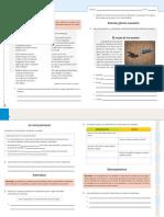 acompañamiento 5.pdf