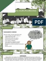 Planejamento e Desenho de Sistemas Agroflorestais