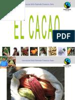 2011_cacao_basico_web.ppt