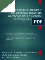 Articulación de la catedra y los Estándares Básicos.pptx