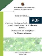 rodriguez_lucena_patricia.pdf