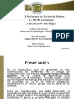 55527924.pdf
