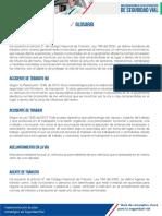 guia-de-conceptos seguridadvial.pdf