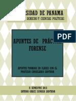 242993956-Apuntes-de-Practica-Forense.pdf