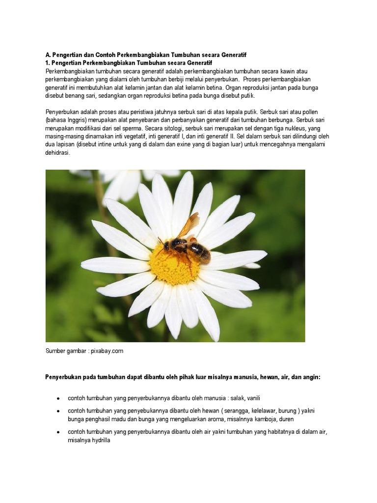A Pengertian Dan Contoh Perkembangbiakan Tumbuhan Secara Generatif 1 Pengertian Perkembangbiakan Tumbuhan Secara Generatif