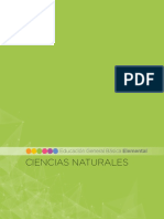 2-CCNN.pdf