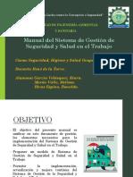 Manual SST FINAL.pptx