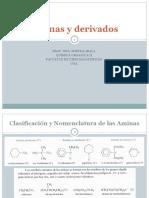 Aminas y derivados