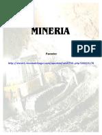 minera.docx