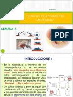 05-Tecnicas de Aislamiento Microbiano