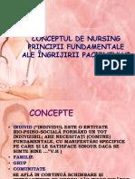 Conceptul de Nursing
