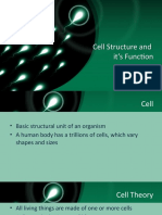 Cell and It's Function