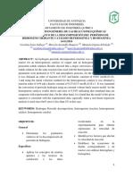 ESTUDIO CINÉTICO DE LA DESCOMPOSICIÓN DEL PERÓXIDO DE HIDRÓGENO MEDIANTE CATÁLISIS HETEROGÉNEA Y HOMOGÉNEA