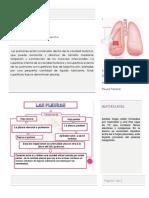 345932879-Histologia-de-Pleura-y-drenaje-pleural.docx