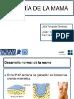Tortajada4416Mar16.pdf