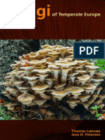 FungiOfTemperateEuropePresentation.pdf