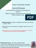 Vet Obst Lecture 8 Uterine Torsion in Domestic Animals