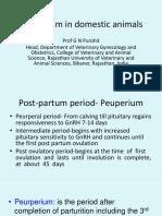Vet Obst Lecture 6 Peurperium in Domestic Animals