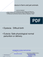 Vet Obst Lecture 7 Causes of Dystocia in Farm Animals