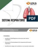 CLASE 8. Sistema Respiratorio 2019