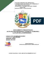 Acta Constitutiva La Flor