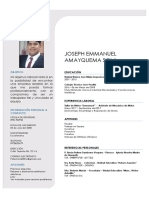 Cv - Joseph Emmanuel Amayquema Sola