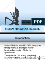 anfis sistem musculo.ppt