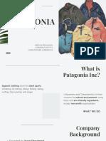 social entrepreneur.pdf