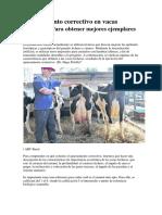Apareamiento Correctivo en Vacas Lecheras