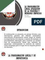 LA PROGRAMACIÓN LINEAL APLICACIÓN DE LA PEQUEÑAS Y.pptx