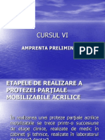Cursul-6 Amprenta Preliminara Si Modelul