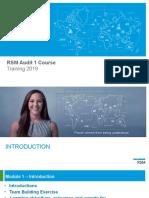 Module 1 RSM Audit Course 1 2019.pptx