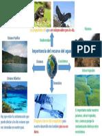 Mapa Mental Importancia Del Recurso Del Agua.
