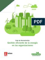 gestion-eficiente-energia-organizaciones-guia-completa.pdf