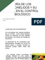 CRIA DE CATARINAS O COCCINÉLIDOS Y SU PAPEL EN EL CONTROL.pptx