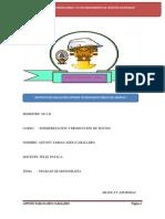 MONOGRAFÍA DE PUENTES PARAPRESENTAR.docx22222222222222.pdf