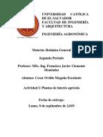 Actividad-1-Plantas-de-interés-agrícola-1 (1)