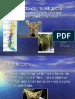 power-zonas-geo-y-flora-y-fauna-.pdf