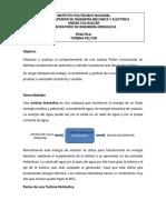 TURBINAS PELTON Y FRANCIS.docx