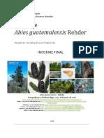 PINABETE.pdf