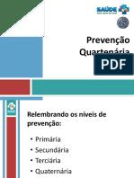 prevencao_quartenaria.ppt
