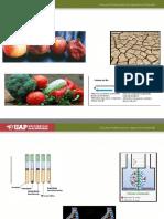 4. Efecto de Factores Ambientales Sobre Crecimiento Microbiano