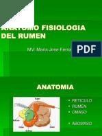 Anatomo Fisiologia Del Rumen...n