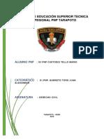 s3 Pnp Custodio Tello Mario -i Trabajo Individual de Derecho Civil