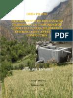 MEJORAMIENTO DE DOS CANALES DE RIEGO EN LA COMUNIDAD DE CEBOLLULLO, PARA MEJORAR LA EFICIENCIA DE CAPTACIÓN Y CONDUCCIÓN