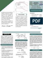 1568694957105_TRIPTICO.pdf
