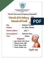 Músculos de la Cabeza y el Cuello.pdf