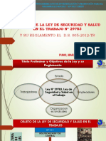 SEGURIDAD Y SALUD ANÁLISIS DE LA LEY N° 29783 - 2019