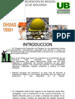 programa prevencion riesgos.pptx